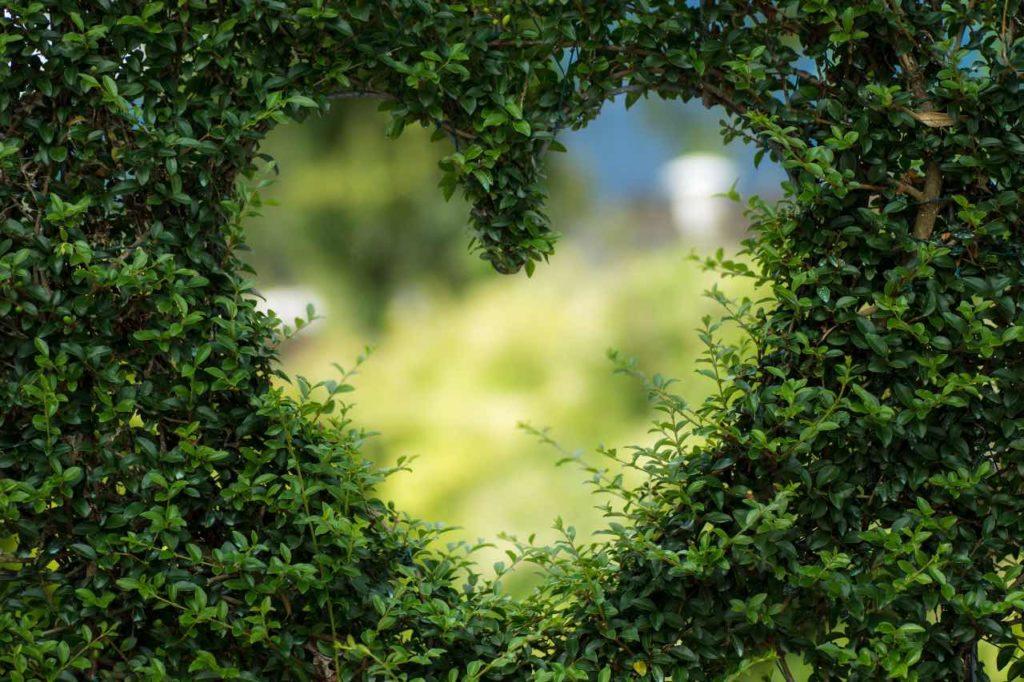 commence par l'amour